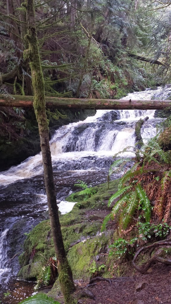 Waterfall, Hiking, Trails, Active Lifestyle