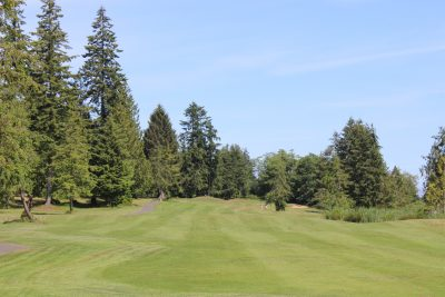 Trees, Greens, Golf Course, Golf