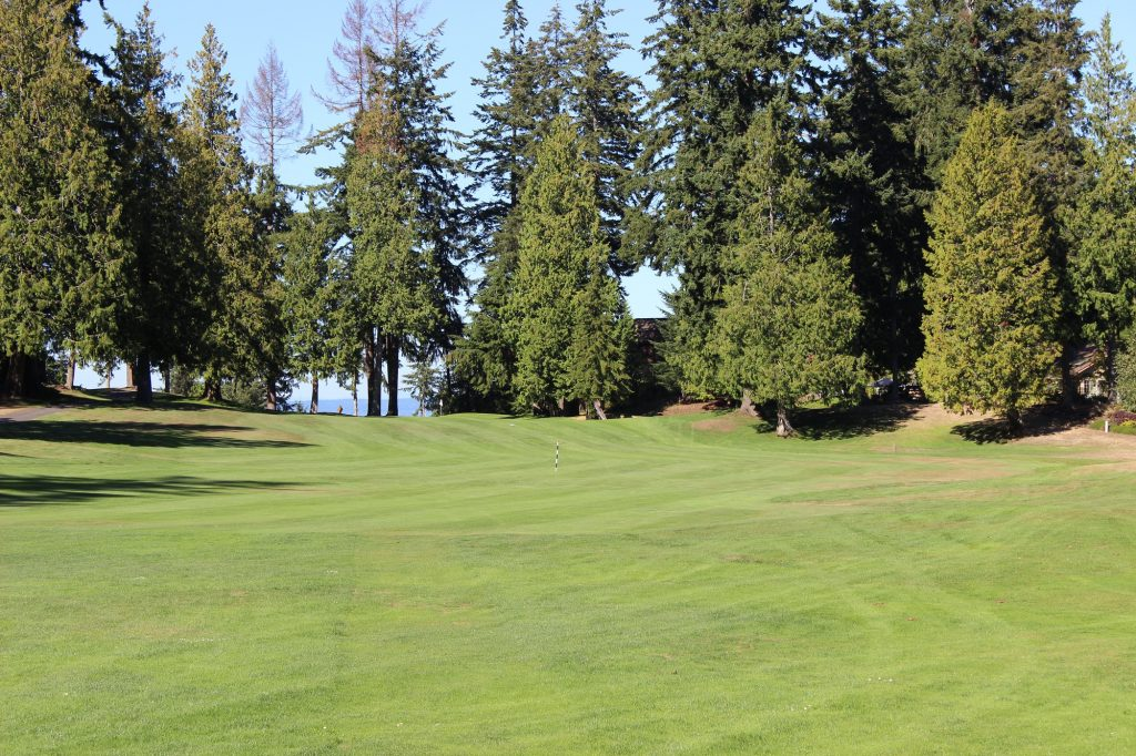 Golf Course, Olympic Peninsula
