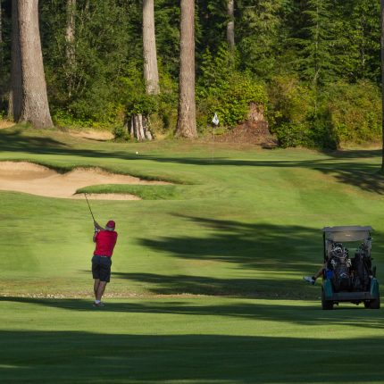Golf, Golf Cart, Golf Course, Olympic Peninsula