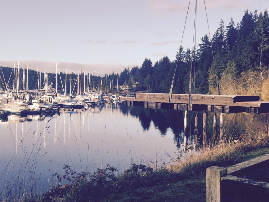 Marina, Harbor, Olympic Peninsula