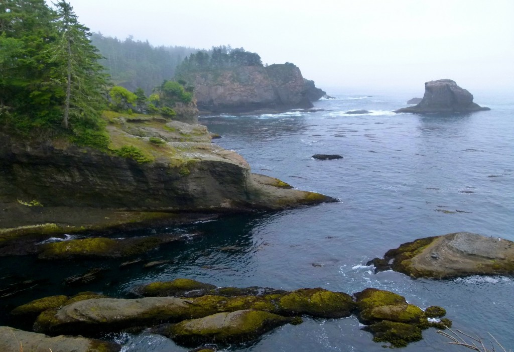 Cape Flattery, Washington, Nature