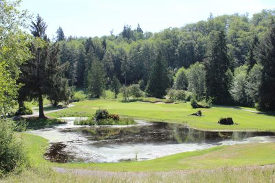 Pond, Nature, Golf, Golf Course