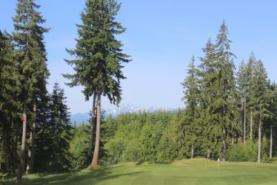 Mountains, Trees, Golf Course, Olympic Peninsula