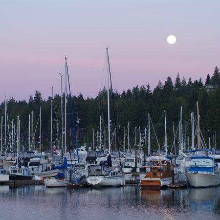 Harbor, Olympic Peninsula, Marina, Boats