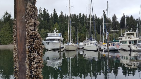 Marina, Olympic Peninsula, Boating